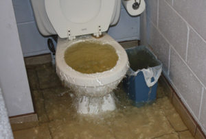 Sewage Cleanup Waterford WI